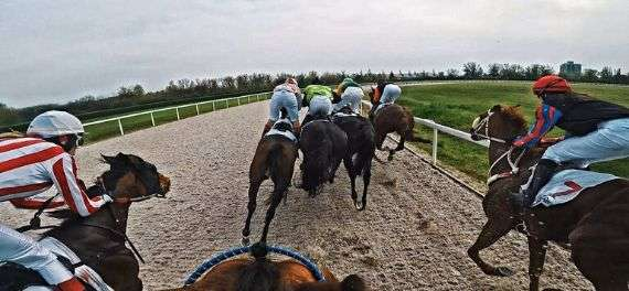 Horse racing in Budapest